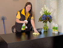 Cleaning Franchise For Sale - Cleaning Franchise Perth - Start Your Own Business